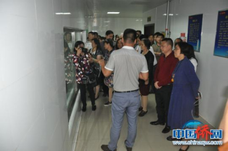 图为侨商在双汇集团考察。林浩 摄