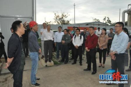 图为侨商在三祥热电公司考察。林浩 摄