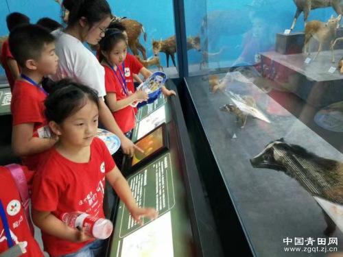 参观丽水博物馆