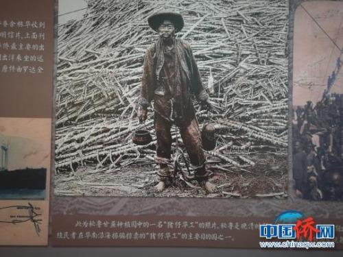 银信博物馆内展出早年出洋华工照片。郭军 摄