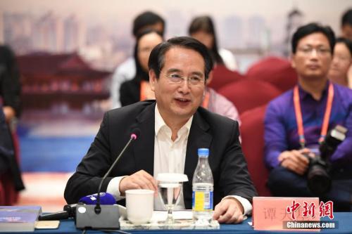 图为国务院侨务办公室副主任谭天星总结发言。<a target='_blank' href='http://www.chinanews.com/'>中新社</a>记者 崔楠 摄