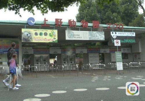 上野动物园。(视频截图)