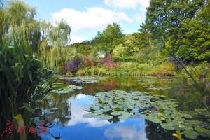 美丽的莫奈花园是名作《睡莲》的原型。