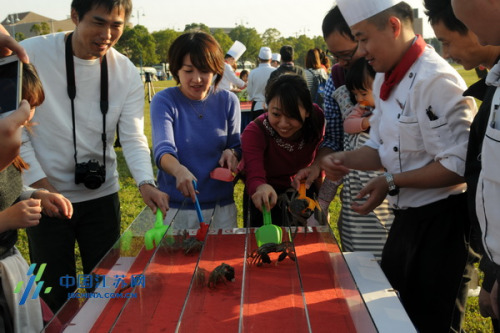 游客互动开始螃蟹赛跑