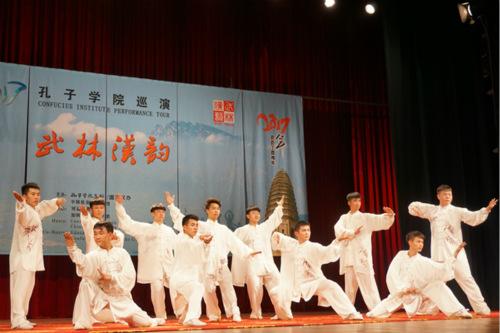 中华武术表演。