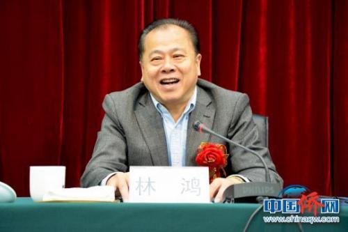 图为宁德市委常委、统战部部长林鸿致辞。叶茂 摄