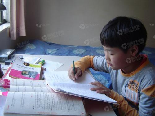 张一彬小时候在学习中文。