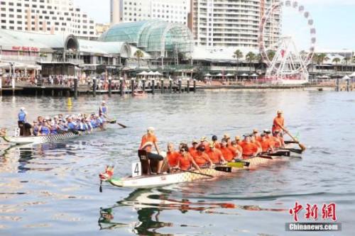 2月24日,悉尼达令港举行龙舟赛,吸引3000多名参赛者,为中国农历新年佳节添彩。图为参赛龙舟队在比赛中。 <a target='_blank' href='http://www.chinanews.com/'>中新社</a>记者 陶社兰 摄