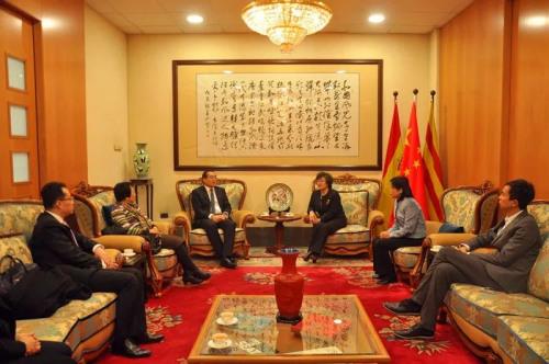 总领事林楠在总领馆会见副主任郭军一行