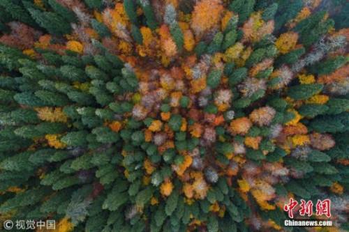 当地时间2017年10月31日,土耳其博卢省,航拍当地的秋日风光,美不胜收。 图片来源:视觉中国