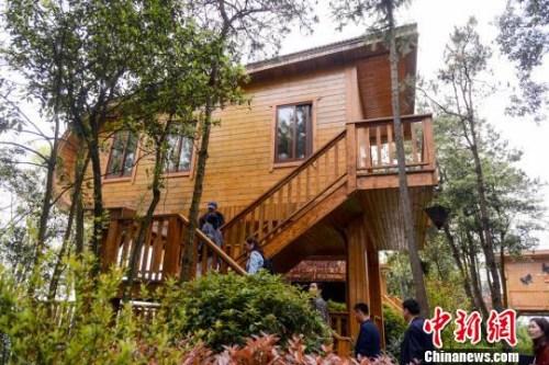 造型别致、与自然和谐相融的木屋酒店。 杨华峰 摄
