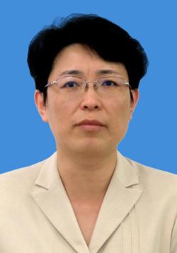隋军 (图片来源:中国侨联网站)