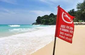 海滩插有红色警示旗帜时,严禁下海游泳
