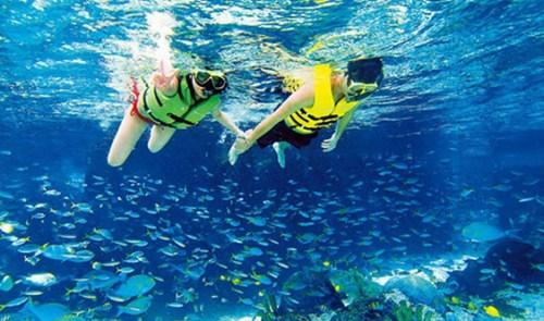 参加浮潜项目务必接受专业指导培训,尽量结伴而行