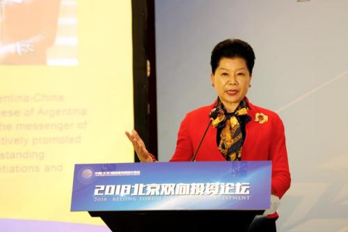 """2018年5月29日,唐清慧女士在""""2018北京双向投资论坛""""发表主旨演讲,浅谈中方企业在阿根廷投资发展环境及双边贸易的发展前景。受访者供图"""
