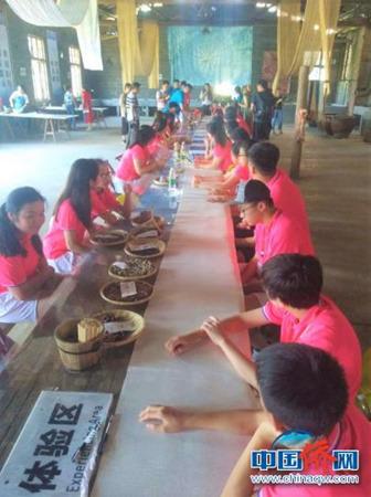 200余华裔青少年齐聚浏阳 与中国传统文化亲密接