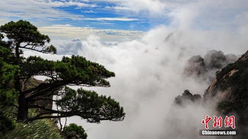 安徽黄山雨后千峰竞秀 万壑生烟
