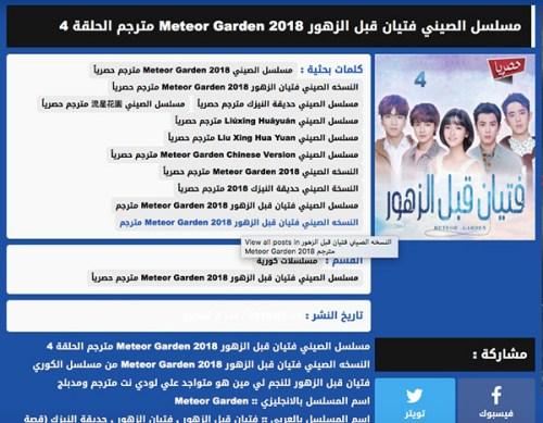 另一个字幕组lodynet所译制的《新流星花园》剧集下载页面。不同的字幕组在翻译质量、上传时间等各方面存在竞争。