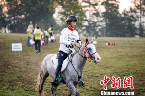 选手在比赛中。国际马联供图 夏原浦摄