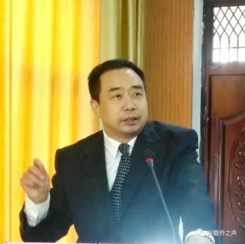 图为安徽省侨联党组成员、副主席兼秘书长杨冰出席并讲话