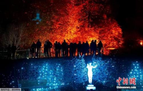 资料图:德国柏林植物园举办灯光秀活动,百万彩灯装点浪漫夜晚吸引民众观赏。
