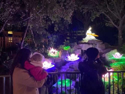游客在花灯前观赏留影。(法国《欧洲时报》/黄冠杰 摄)