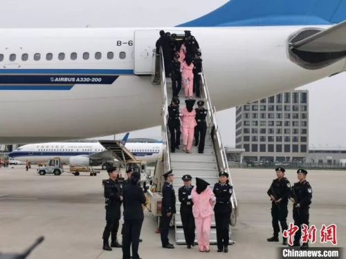 """资料图:警察在押回""""杀猪盘""""诈骗人员。(图源:中国新闻网)"""