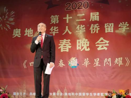 李晓驷大使致辞。(图片来源:中国驻奥地利大使馆微信公众号)