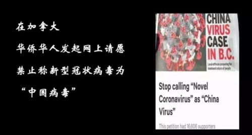 视频截图(视频来源:新华网)