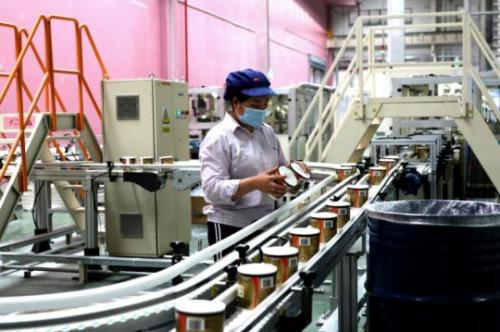 图为金红叶纸业(南宁)有限公司3.5万吨生活用纸项目一条生产线 潘志安 摄