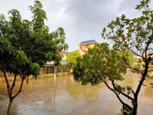 雨后的柬埔寨。(作者供图)