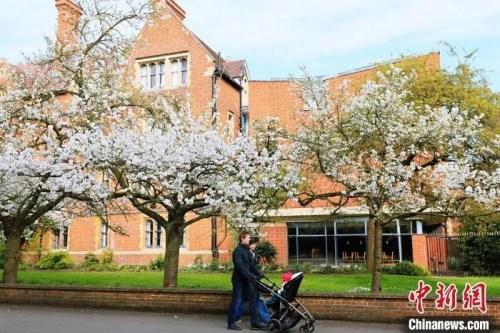 资料图:疫情下的剑桥校园。 许通 摄