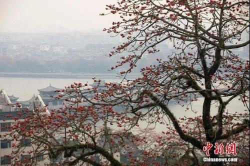 资料图:广东省潮州市韩愈纪念馆附近景观。刘莉生 摄