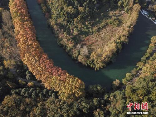 """航拍贵阳花溪河畔""""黄金大道""""秋色美"""