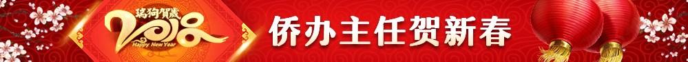 """2018年""""文化中国·四海同春"""""""