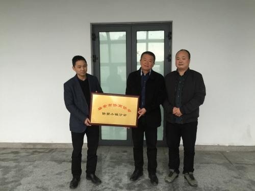 瑞安侨商协会助小镇建设