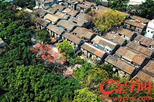 中国侨网邝其照晚年定居于广州聚龙村 金羊网记者 周巍 摄