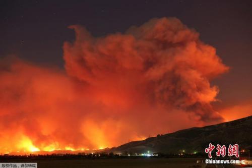 """中国侨网资料图:据报道,这场被称为""""托马斯""""的大火最初发生于圣保拉北部的一个公园。由于强风作用,不到几个小时里,大火在已经蔓延了至少10000英亩。"""