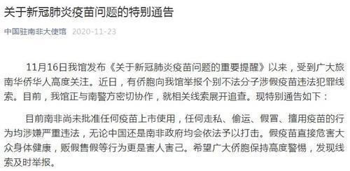 中国侨网图片来源:中国驻南非大使馆微信公众号截图