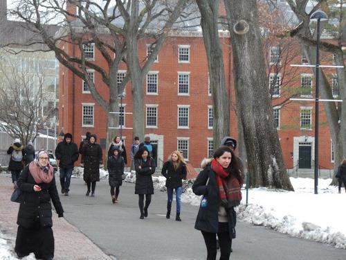 中国侨网哈佛大学发榜,今年录取的新生中亚裔占22.2%,再创新高。(美国《世界日报》/唐嘉丽 摄)