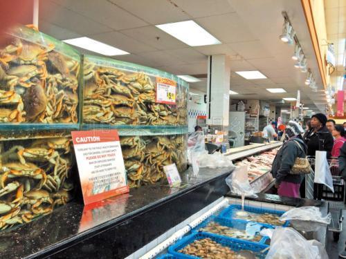中国侨网吴娟娟平常喜欢在超市买海鲜吃,日前一时兴起和朋友抓海鲜