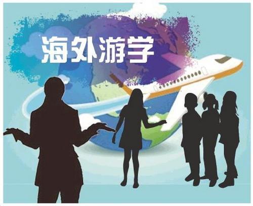 中国侨网调查动机