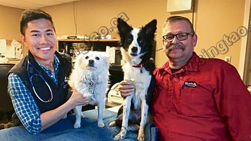 加拿大博狗体育青年小城当兽医