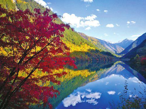 葱绿山林风景图片