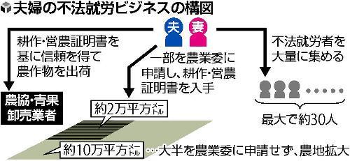 """涉华夫妇在日本涉及""""三黑""""赚钱被逮捕"""