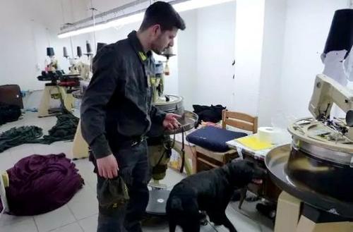 中国侨网意大利警方首次出动警犬队配合税务警察的检查工作。(意大利欧联网)