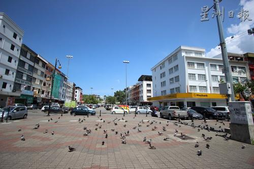 中國僑網甘榜亞逸廣場,鴿子在地上覓食。(馬來西亞《星洲日報》)