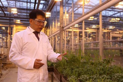 旅英华裔科学家顾玉诚:引领英国农业化合物研究