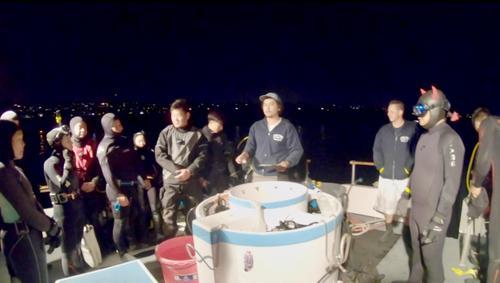 美南加州迎来休闲捕捞龙虾季华人分享抓龙虾诀窍