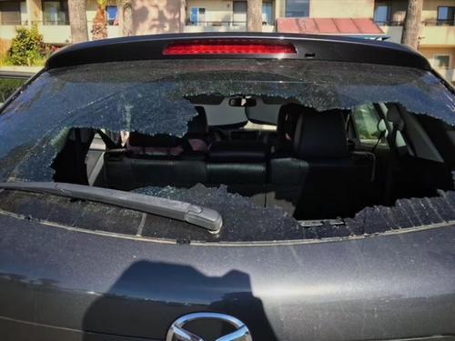 中国赴美游客频遭车窗被砸财物被偷感叹治安差